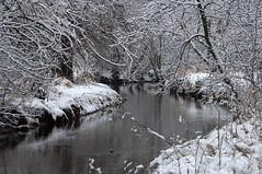 Snowy river (violetflm) Tags: winter snow river landscape d2x cf30828