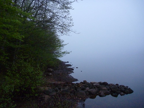 Mist on the lake.