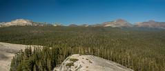 IMG_6699-Edit-Edit (dangerismycat) Tags: california yosemite yosemitenationalpark tuolumnemeadows lembertdome panorama whitemountain gaylorpeak mountdana mountgibbs