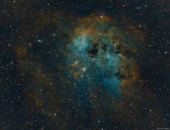 The tadpoles of IC 410 (Martin_Heigan) Tags: tadpoles ic410 ngc1893 faint emission nebula widefield hubblepallete hos hst hasiioiii hydrogenalpha oxygeniii cls ha oiii sii narrowband sgp pi astronomy astrophysics astrograph telescope martin heigan astrophotography pixelmath tricolour deepskyobject dso space science physics canon 60da mhastrophoto october2016 sequencegeneratorpro pixinsight astroimaging dustandgas emissionnebula indexcatalogue astrometrydotnet:id=nova1968347 astrometrydotnet:status=solved