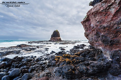 An amphitheater of rocks! (Ashk81) Tags: rocks australia victoria nationalparkvictoria capeschanck seascapes dusk amazingdusk amphitheater reef sunkissed country aussie melbourne pacificocean