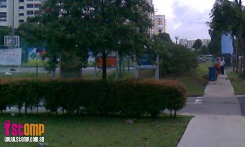 TC: Overgrown hedges at Hougang that attract insects have been trimmed