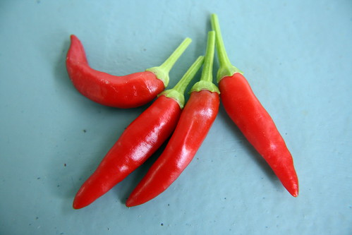 Today's Harvest: Hot Peppers