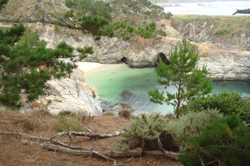 Point Lobos (China Cove)