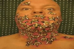 BEE Bop! Face Paint in motion. Artist James Kuhn. (hawhawjames) Tags: art face painting buzz beard james paint artist body bees sting makeup bee honey 365 stinger hive kuhn mehron