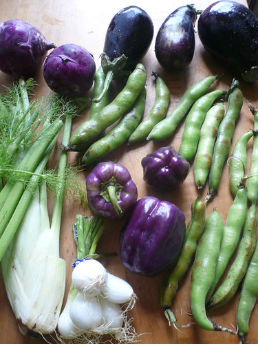 CSA: Week 7 -- green, purple and white.