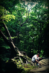 The Giving Tree (LinkinFreakPixar) Tags: light evan tree green nature beauty leaves forest happy climb moss rocks alone sitting god roots sneakers giving sit older trunk apples duncan enchanted