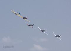 Texan Formation (ravenscroft) Tags: canon fighter wwii 70300mm texan t6 snj t6texan 40d snjtexan canon40d readingpennsylvaniareading pawwiiweekendwwiiweekendwwiiairshowwwiiairshowairshowworldwariimidatlanticairmuseumaviationaircraftairplane