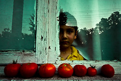 WindowLifeWindow (hkncnr / Hakan nar) Tags: blue red summer green window tomato children estate faces ocuk domates pencere yellov hkncnr
