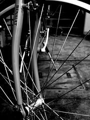 New family   (Hardy ~higotai~) Tags: bw bicycle japan blackwhite blackdiamond 自転車 モノクロ 白黒 higotai ricohgx200