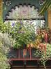 Nob Hill House (AGA~mum) Tags: paintedlady victorianhome leadedwindows containerplanting queenannehillseattle carvedwindowboxes nobhillinseattle quoampliuseoamplius