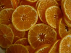 Orange Slices (Emily Barney) Tags: food fruit citrus oranges slices