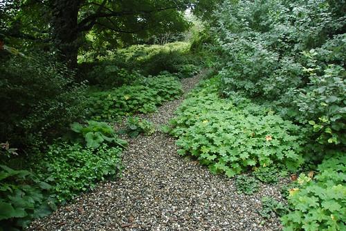Path, Brine Garden