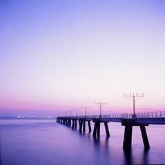 Purple Sunset (GMilo) Tags: rolleiflex t fuji rxp