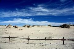 Dune a Capocotta (cl@udiob) Tags: roma dune cielo spiaggia torvaianica capocotta nudista oasiprotetta macchiamediterranea 2009canon450dclaudiob