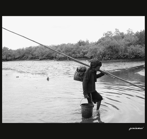 Making a Living from Fishing
