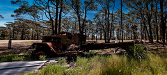 The Clampett's  Would be Proud (Visual Clarity Photography) Tags: trees panorama grass truck spring nikon october rust decay rusty australia nsw vehicle newsouthwales wreck tamron 2009 corrugatediron lightroom hawkesbury d300 gp1 flatbedtruck colorefexpro kurrajongheights tamronspaf1750mmf28xrdiiildasphericalif niksoftware nikond300 nikongp1 3003081panorama2