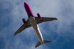 HA-LPQ - 3409 - Wizzair - Airbus A320-232 - Luton - 091023 - Steven Gray - IMG_2815