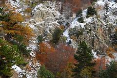 Autumn - winter canvas (Mavroudakis Fotis) Tags: autumn sky mountain nature horizontal outdoors day foliage lush idyllic scenics beautyinnature nopeoplephotography