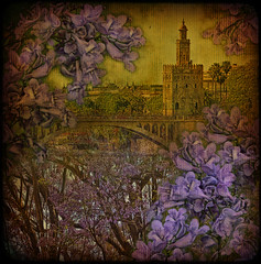 Torre del Oro through jacaranda... (egold.) Tags: sevilla spain seville textures jacaranda andalusia soe hdr torredeloro infinestyle memoriesbook theunforgettablepictures atqueartificia magicunicornverybest selectbestexcellence magicunicornmasterpiece sbfmasterpiece