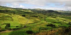 Pico (CunhaVz) Tags: nature landscape island nikon pico grassland azoreslandscape planaltocentraldaachada