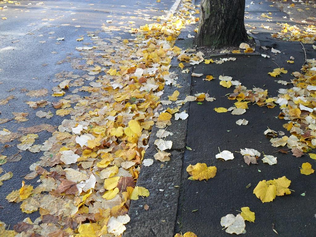 Croydon Leafy Lanes