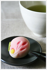 autumn chrythansimum (p o n z u) Tags: japanese sweets wagashi