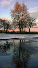 tree reflecting in a fozen pond (rob of rochdale) Tags: blue winter snow cold tree ice water pond northwest lancashire icy rochdale brrrrrrr syke greatermanchester