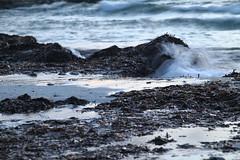 Refresh (r o b i n - h o o d) Tags: sardegna blue sunset sea wallpaper blur marina tramonto mare mood sardinia blu perspective caos polarizer deepoffield 50d fullhd eos50d canoneos50d caoscalmo sarenascoada sanveromilis wallpaperhd robertoonidi