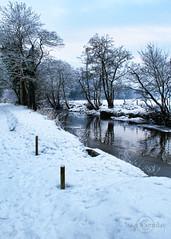 Winter ! (James Whorriskey (Delbert Jackson)) Tags: uk blue ireland winter snow ice catchycolors photo photographer picture photograph londonderry northernireland derry 2010 ulster claudy impressionsexpressions aroundus jameswhorriskey delbertjackson claudycountrypark jameswhoriskey riverfaughan