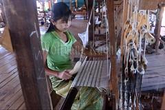 30098746 (wolfgangkaehler) Tags: asia asian southeastasia myanmar burma burmese inlelake villagelife lake innpawkhonevillage woman workshop people worker working weaver weaving weavingloom weavinglooms weavingcloth loom looms