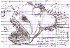Angler Fish Grid