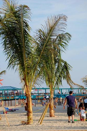 26/365 Beach_20090628-11