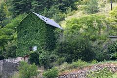 Maison camouflée dans les Gorges du Tarn (Cévennes)