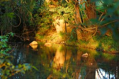 Harper Creek - explore (daKing pics) Tags: queenslandaustralia connondale harperscreek dragondaggerphoto