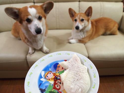 KOGI and WEL with Taiyaki