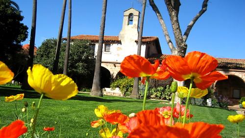 San Juan Capistrano Mission Poppies (Plost Modern)