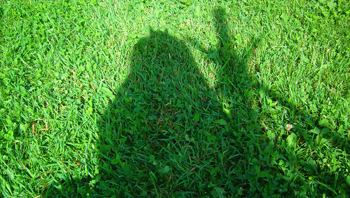 20090702 - X-Day - GEDC0208 - shadow in the grass - please click through to leave a comment on FlickR