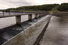 065 (Simon M Foster) Tags: water damm weir riverwansbeck