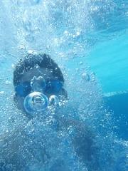 La otra cara del agua (Jos Manuel Reyes F.) Tags: ocean sea fish water mxico agua underwater seagull bajo under olympus el tough gaviota cancn 8000 finearts submarinas josmanuelreyesfuente olympus8000 st8000 olympusmjutough8000 fotgrafomexicano ut8000
