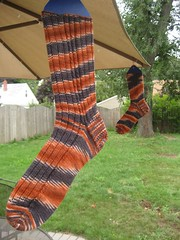 Orange pooled socks