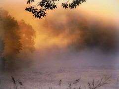 River Of Light (Nature_Deb) Tags: morning trees light summer sunlight mist nature water fog river landscape gold valentine grasses niobrara niobrarastatepark