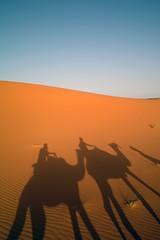 dromedaries silhouettes (Holy Joe) Tags: sand desert silhouettes sigma morocco deserto marrocos foveon merzouga x3 ergchebbi dp1 dromedaries