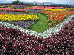 flower tapestry at biltmore