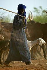 Man Herding