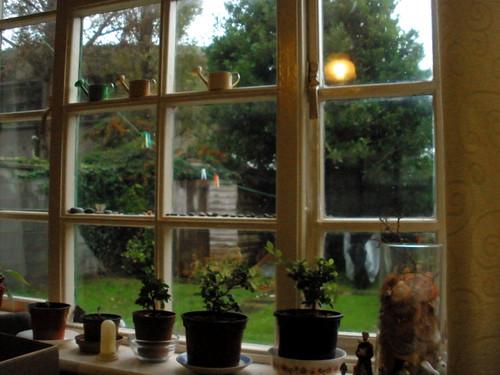 Living room & back garden