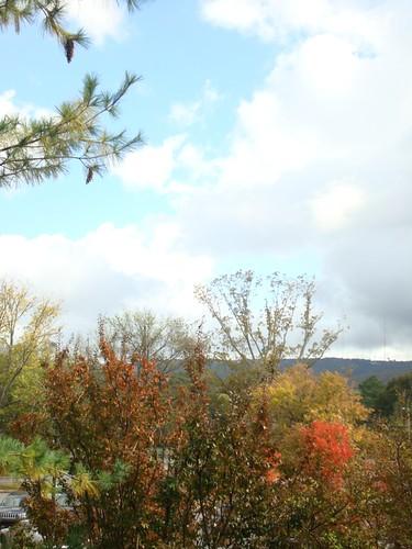 Huntsville in Fall 5
