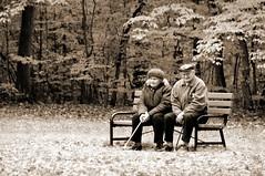 [フリー画像] [人物写真] [一般ポートレイト] [恋人/カップル] [老人/お年寄り] [ベンチ] [モノクロ写真]     [フリー素材]