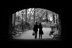 Lovers in Central Park (Airicsson) Tags: park new york city nyc bridge autumn blackandwhite bw usa white ny black fall love reed america way walking island lumix us perfect couple noir day walk manhattan magic central nb lovers panasonic lou romantic passage et blanc blackdiamond romantism blackwhitephotos lx3 magicpicture platinumheartaward artofimages bestcapturesaoi