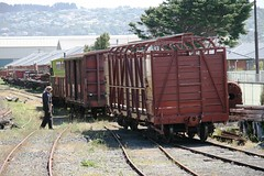 Cattle Wagon T175 - a (southspeed) Tags: train diesel railway trains steam nz dunedin locomotives preservation wagons carriages oceanbeachrailway